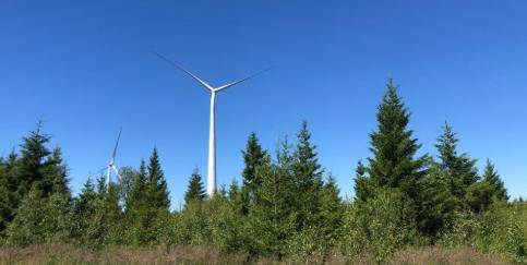 Energiequelle GmbH : Finnischer Windpark Paltusmäki speist ersten Strom ein - 800 MW Pipeline